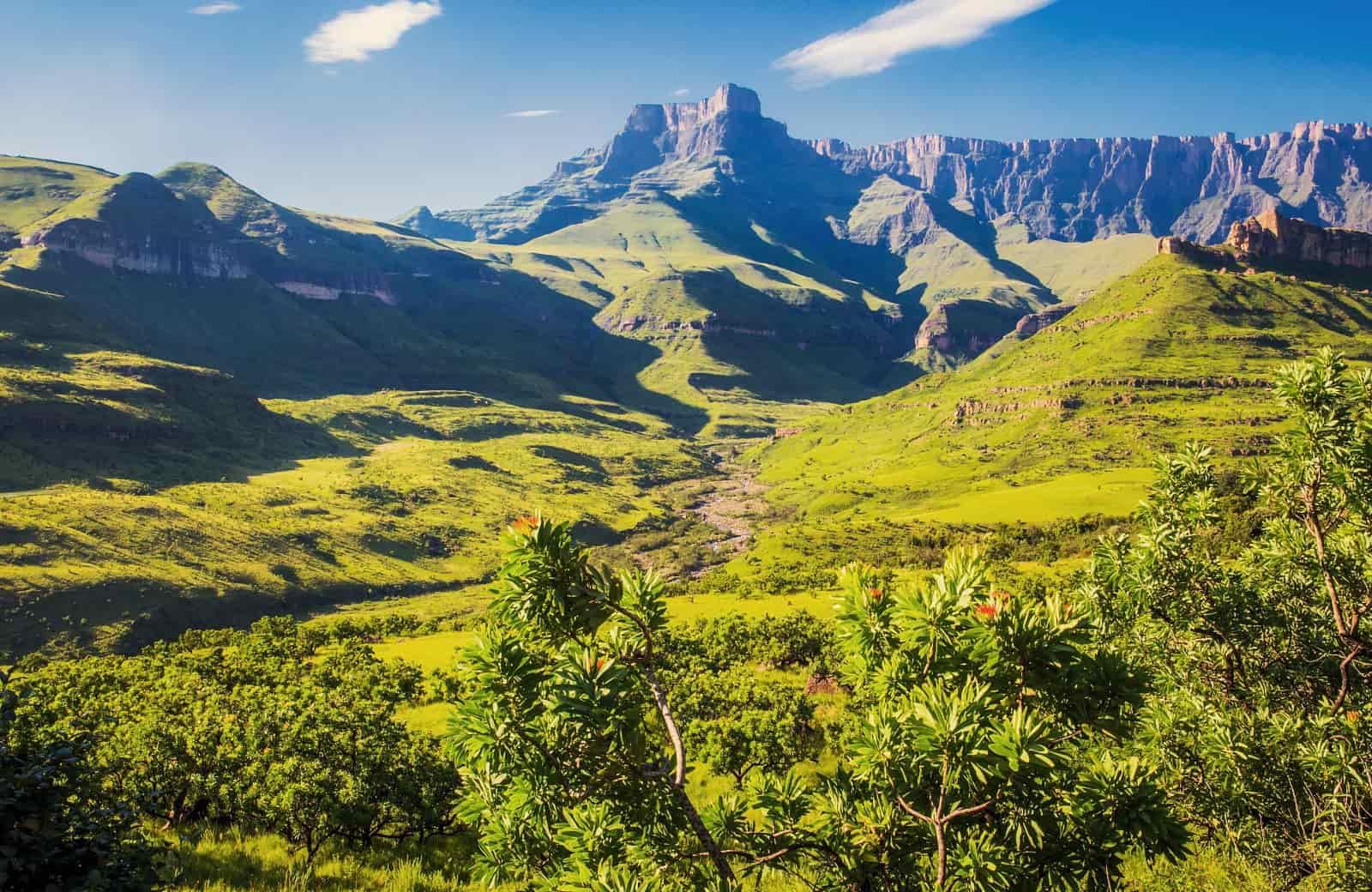 Voyage Afrique du Sud - Le Drakensberg - Amplitudes