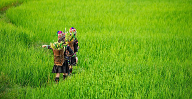 accroche-ethnies-yunnan