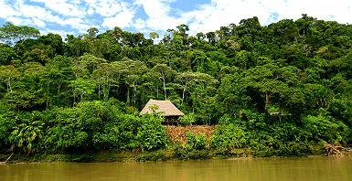 Le Río Napo - Equateur