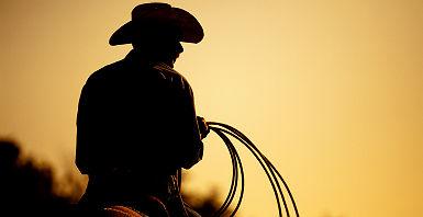 Cowboy au Texas, Etats Unis