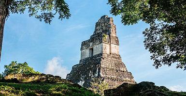accroche-rainforest-mayas-singes-hurleurs