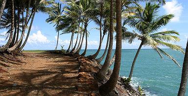 Ile Saint Joseph - Guyane