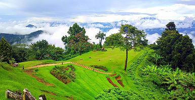 Champs dans une vallée de Chiang Mai - Thailande