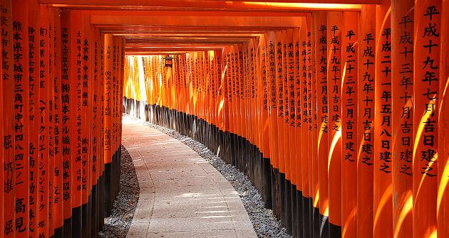 Les torii du sanctuaire Fushimi Inari-taisha - Japon