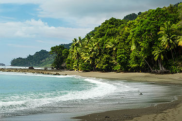 /images/naga/Parc National Corcovado - Costa Rica